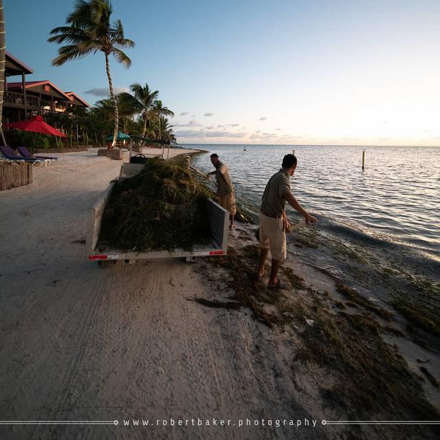Belize - 2019