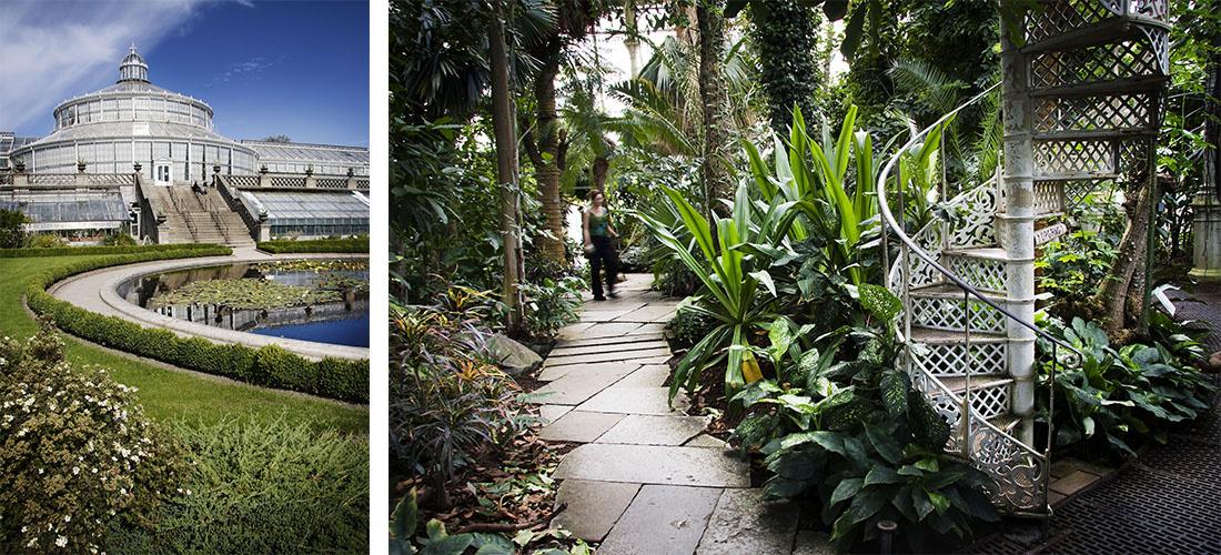 Botanical Garden Photos By Ty Stange Courtesy Copenhagenmediacenter