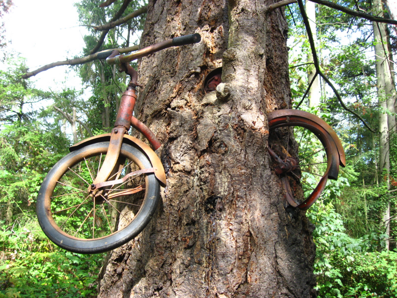 tree eating a bicycle