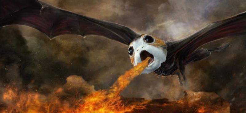 Porg Dragon