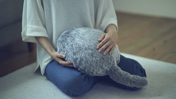 A Robotic Cat Shaped Cushion With No Head Or Legs For 80 Shittykickstarters